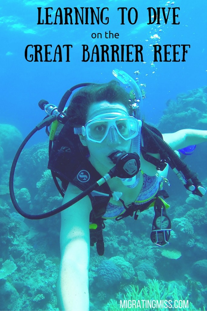 Learning to Dive on the Great Barrier Reef