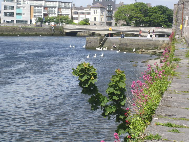 Galway Best Expat City
