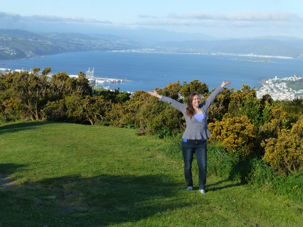 Wellington Best Expat City