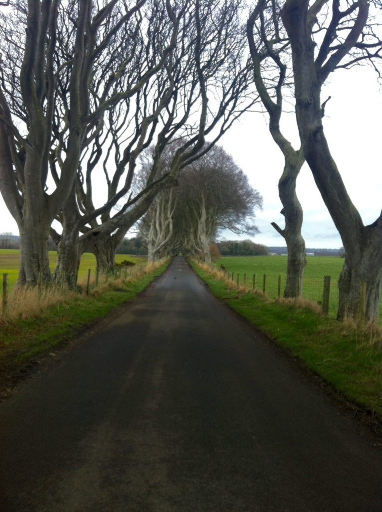 dark hedges northern ireland weekend away