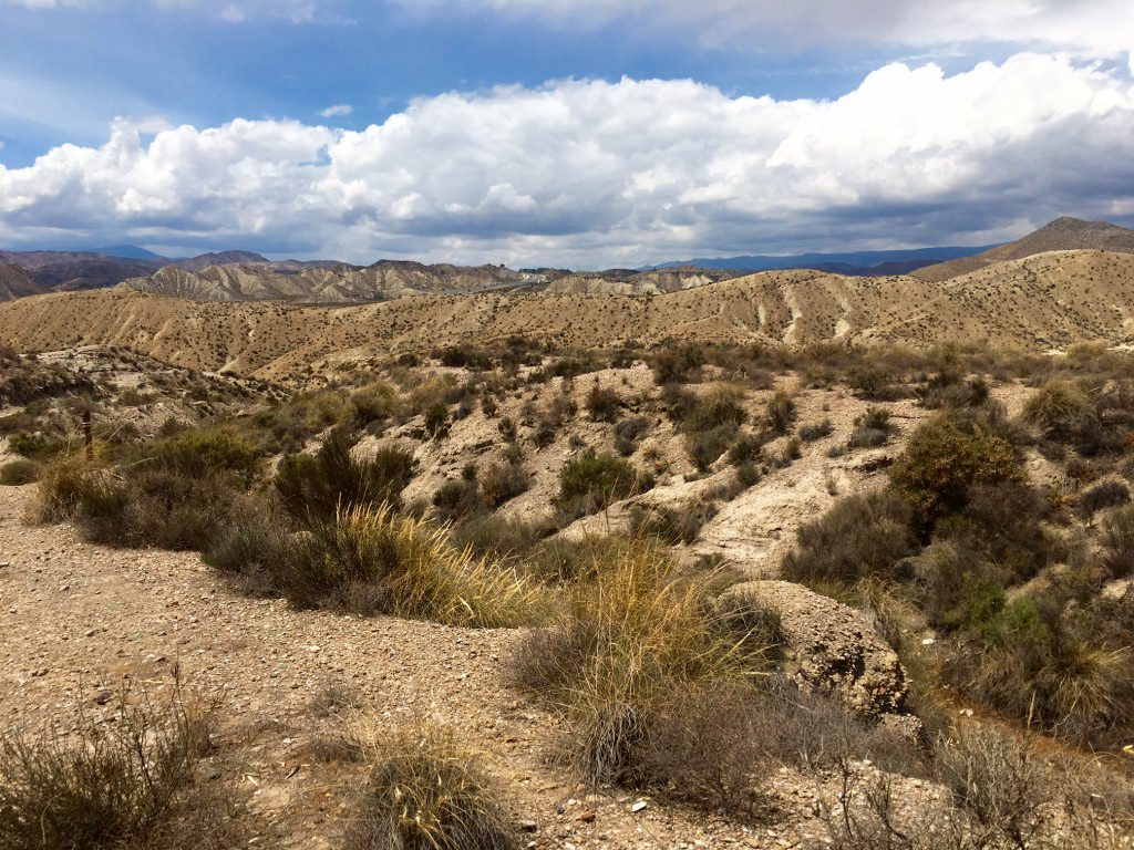 Tabernas Desert Visit Almeria