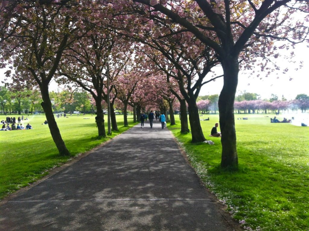 The meadows top things to see in Edinburgh