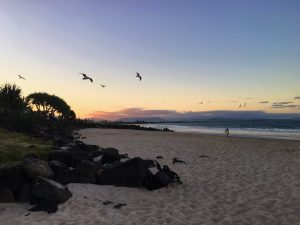 5 Years of Blogging - Byron Bay Australia
