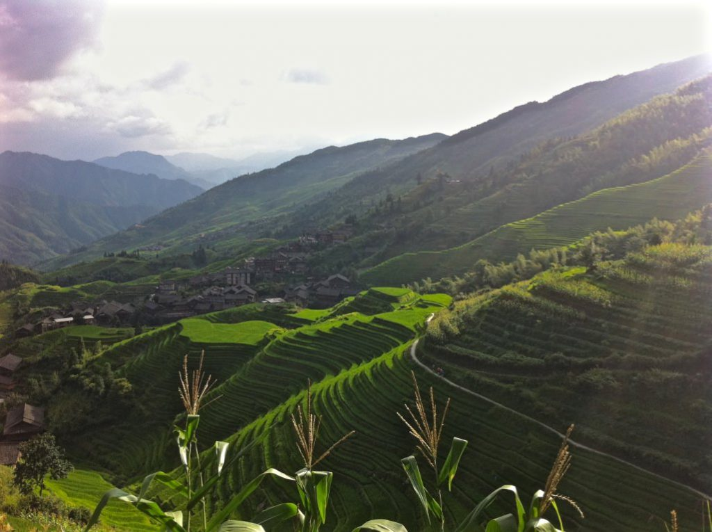 Walking rice terraces china Ping'an Longji Rice Terraces