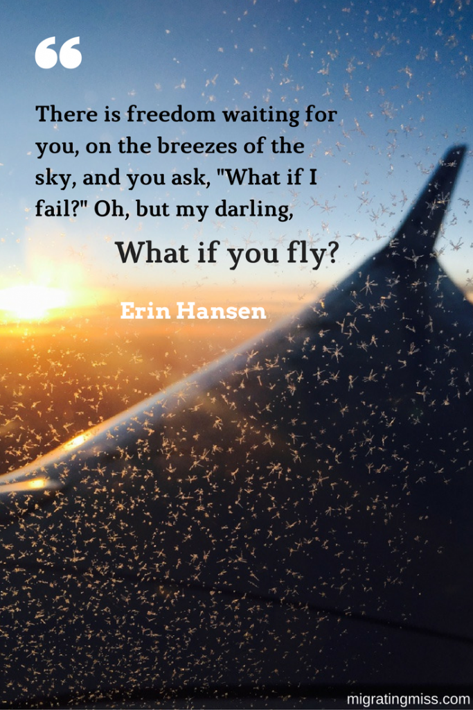 Travel Quote What if You Fly Migrating Miss
