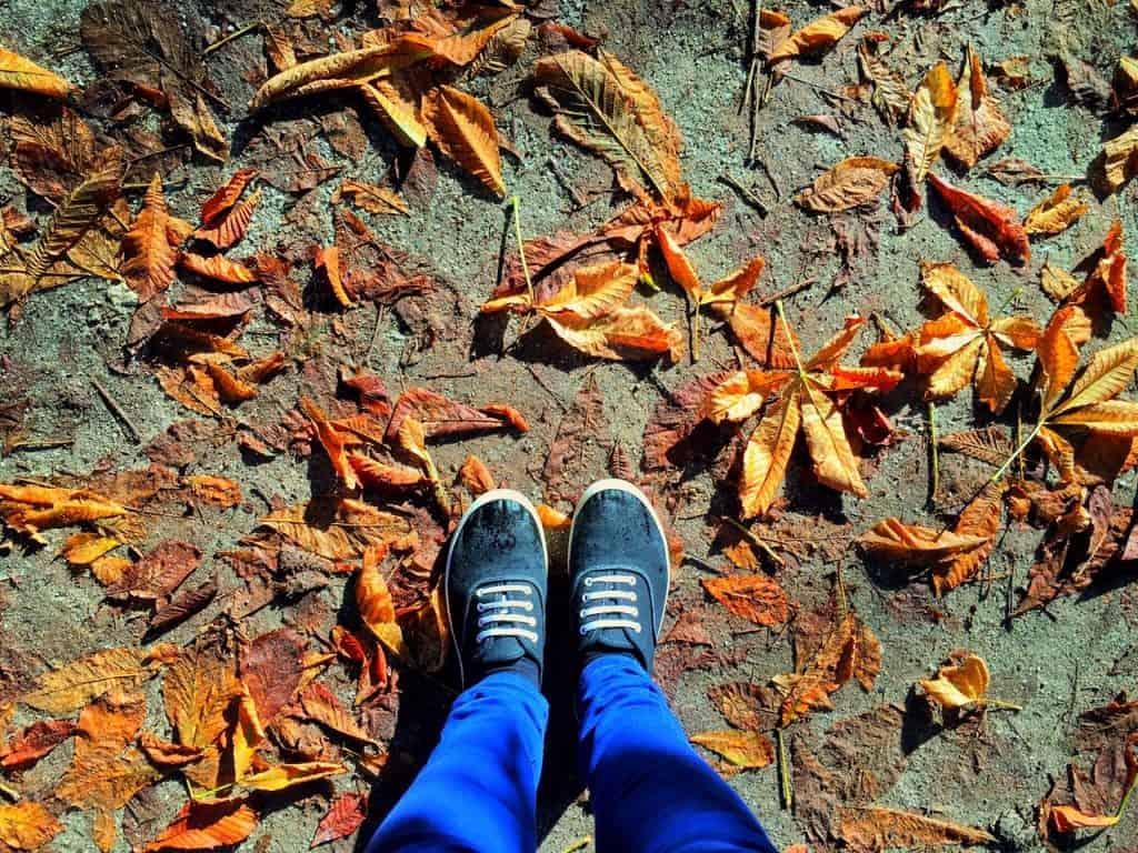Autumn in Madrid, Spain Parque Buen del Retiro
