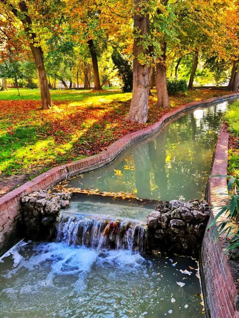 Parque Buen Del Retiro Madrid Spain Autumn