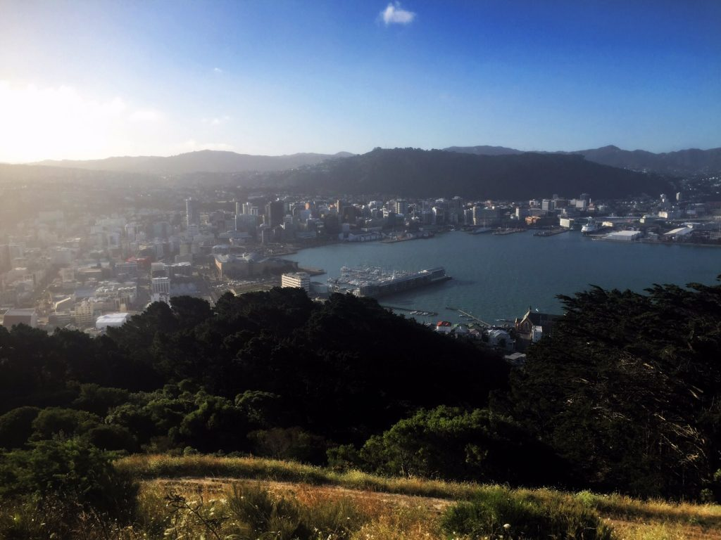 Expat Interview Moving to Wellington New Zealand