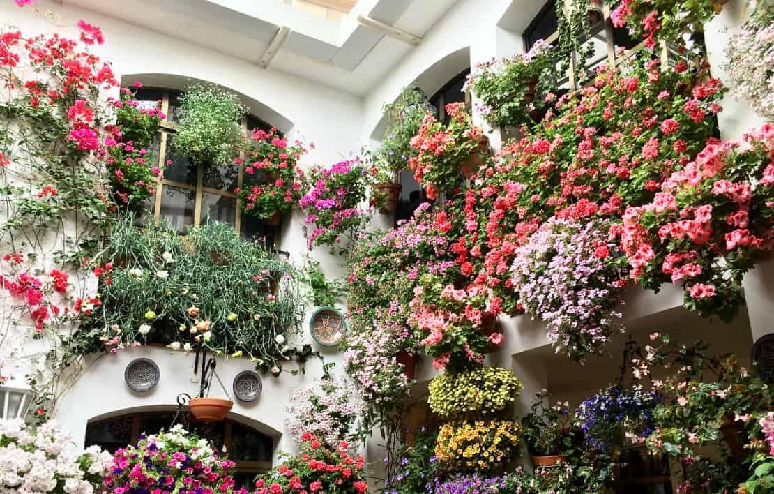 Los Patios Festival Courtyard Cordoba Europe in Spring