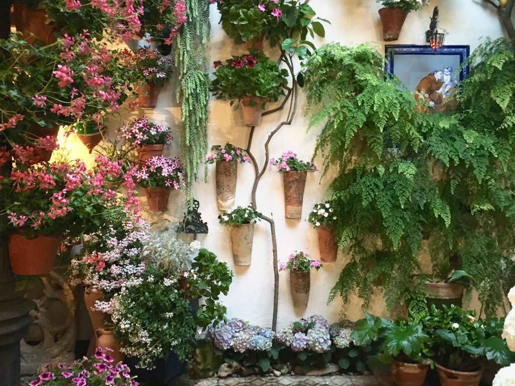Córdoba Patio Festival: Why May is the Best Time to Visit Córdoba ...