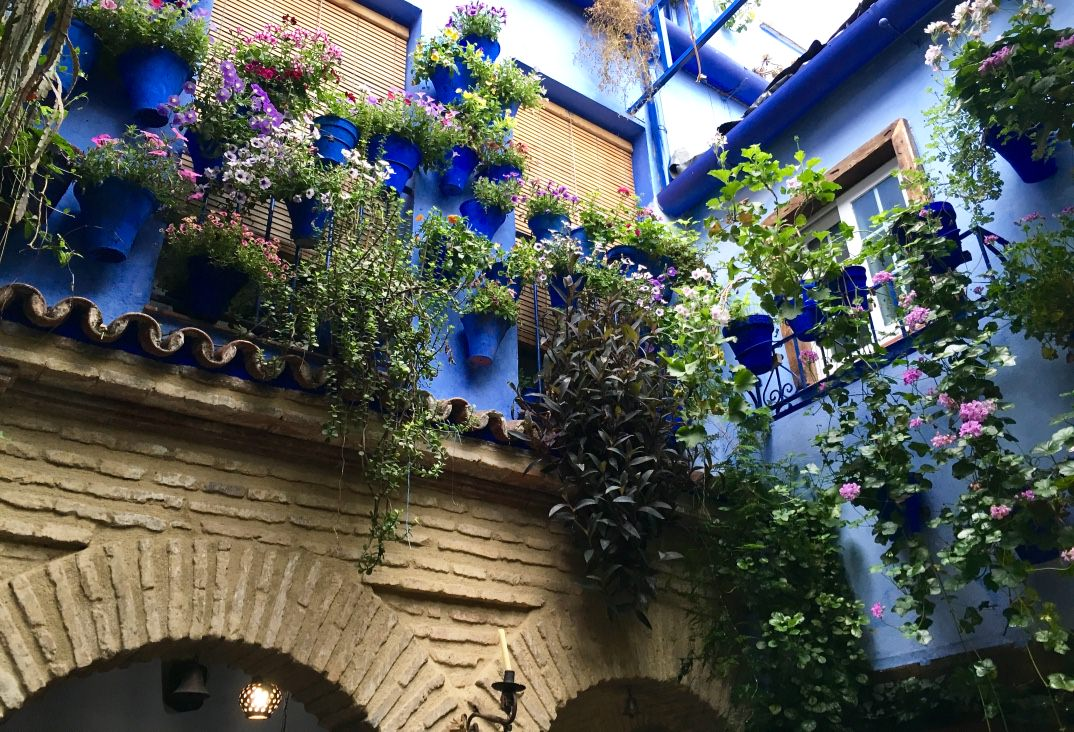 Patios In Cordoba Festival Spain