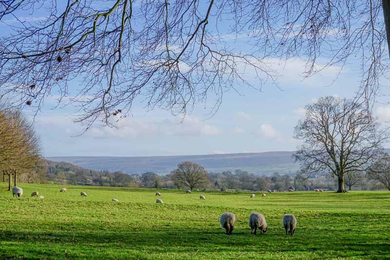 Visiting Ilkley Yorkshire England United Kingdom