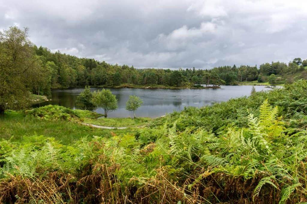 Lake District Orienteering