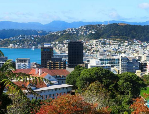 Moving to Wellington, New Zealand