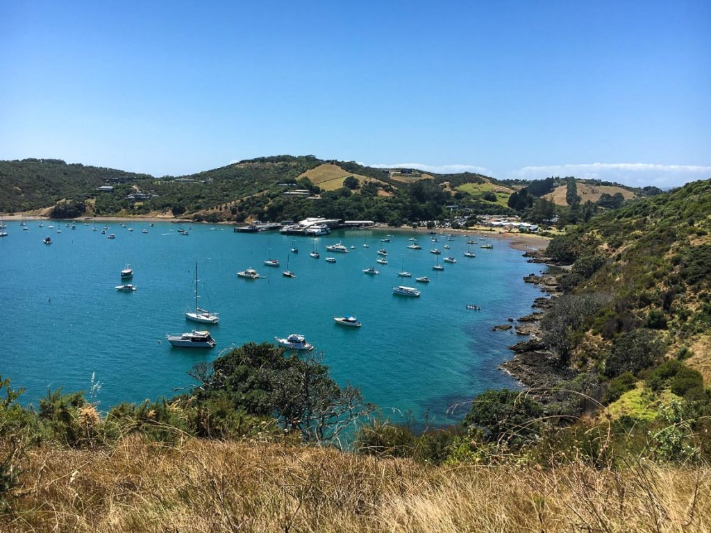 2 days in Auckland New Zealand - Waiheke Island