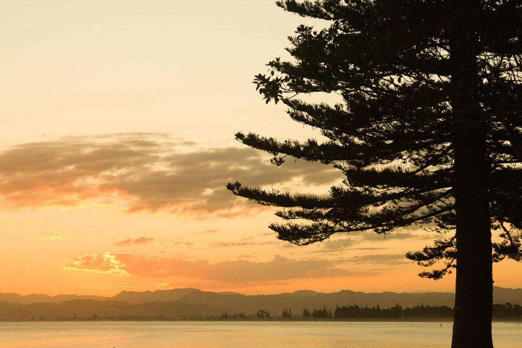 New Zealand North Island Itinerary Gisborne
