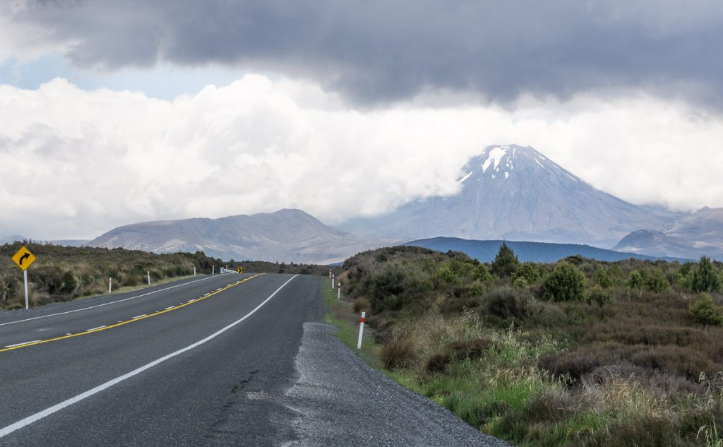 North Island Road Trip