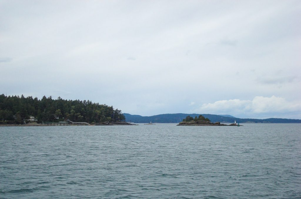 Whale Watching Salt Spring Island