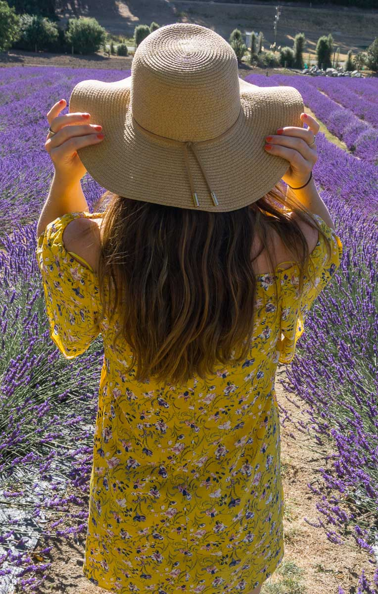 Visiting Wanaka Lavender Farm, New Zealand - Migrating Miss