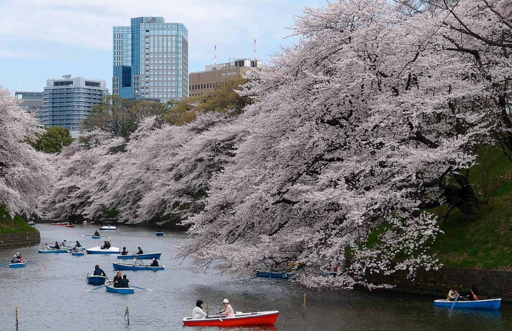 What to do in 2 days in Tokyo