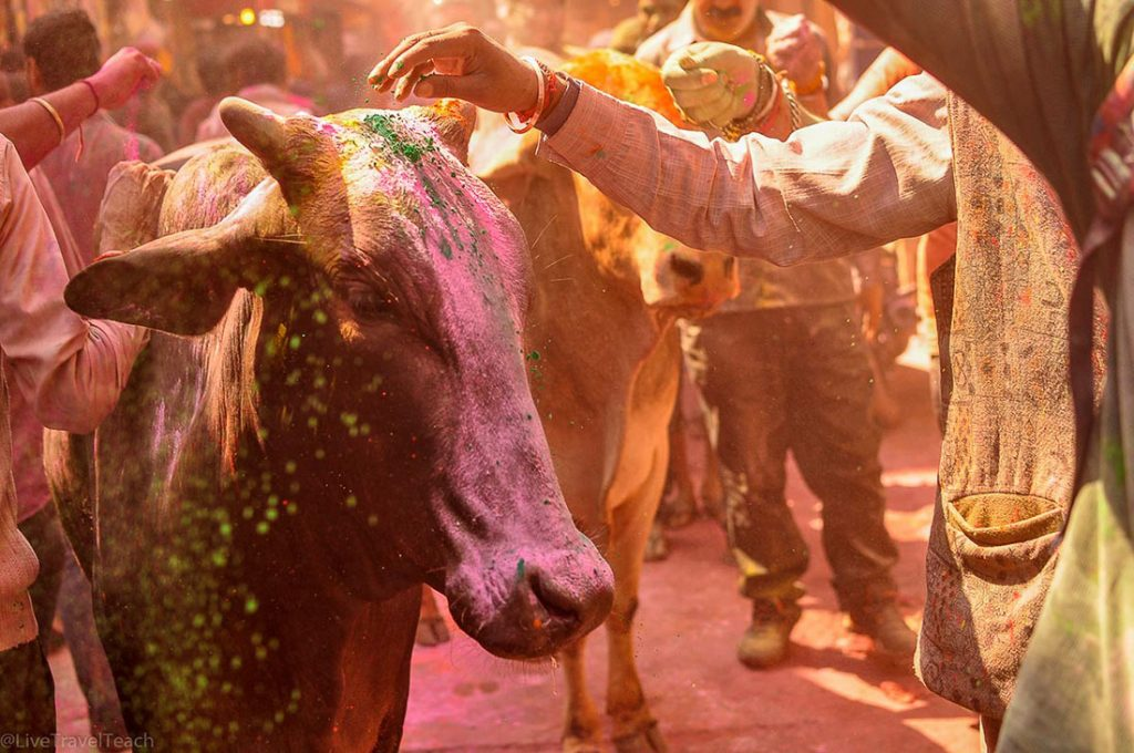 Holi - Beautiful Places in India