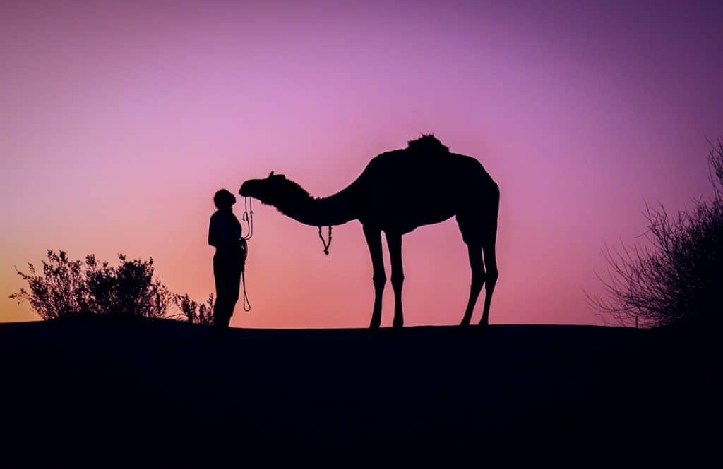 Jaisalmer - Beautiful Places in India