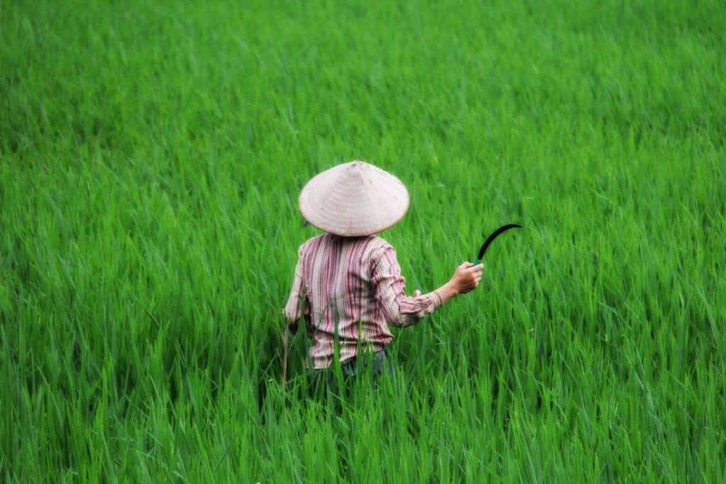 Mai Chau - Beautiful Places in Vietnam