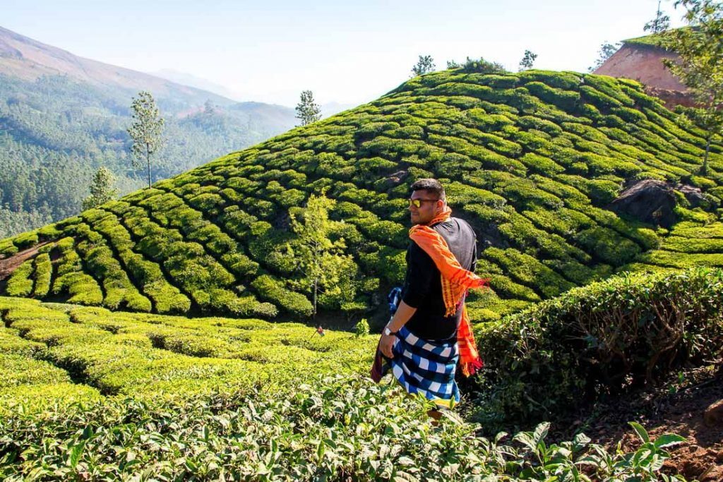 Munnar - Beautiful Places in India