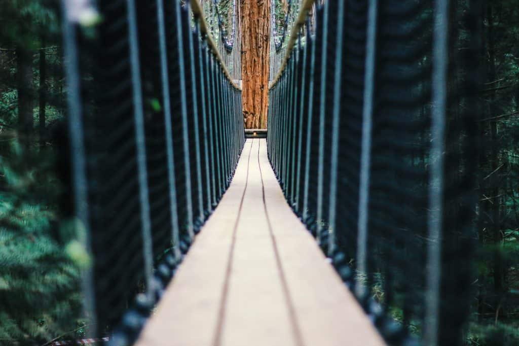 Things to do in Rotorua - Whakarewarewa Redwoods