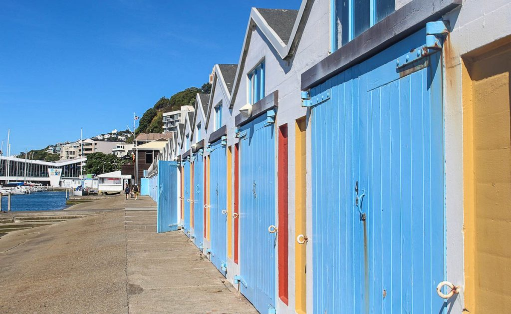 Free things to do in Wellington - Oriental Parade