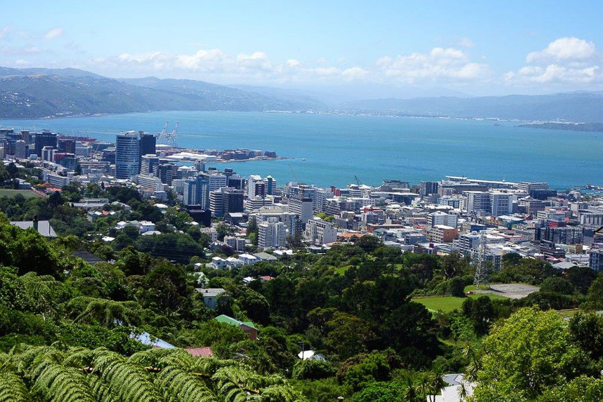 Expat Interview: Wellington Harbour, New Zealand