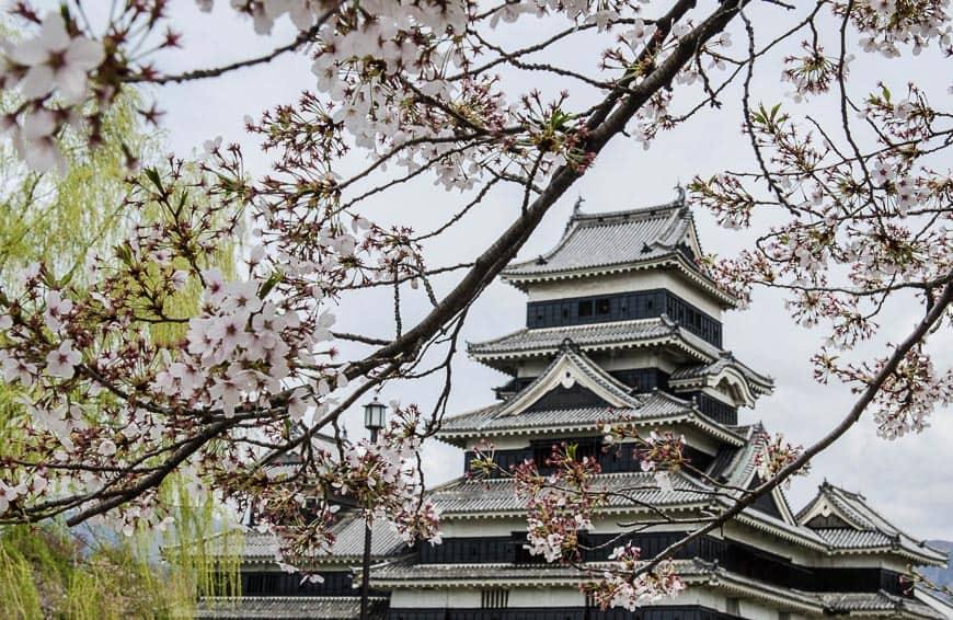 Day Trip from Tokyo - Matsumoto