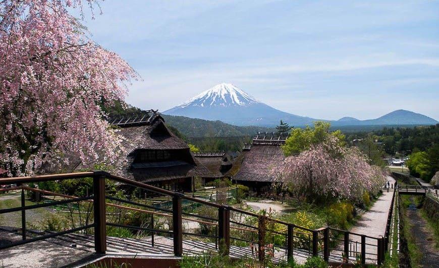 Day Trips from Tokyo - Kawaguchiko