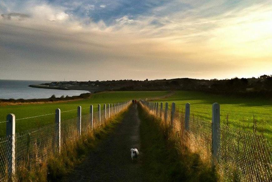 Day trips from Dublin - Bray Head Walk
