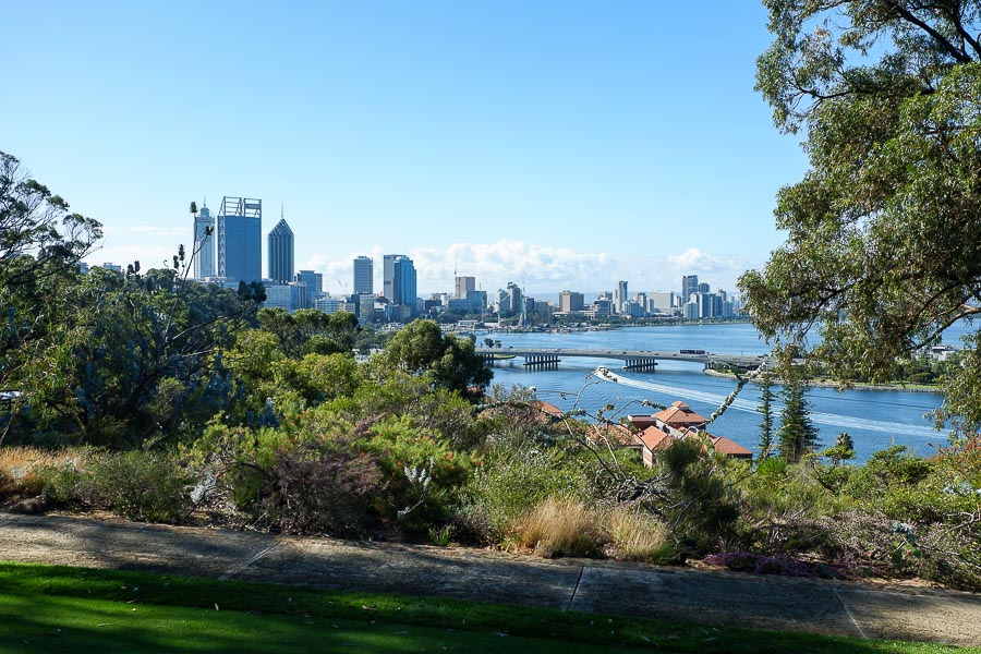 King's Park - 3 Days in Perth Itinerary