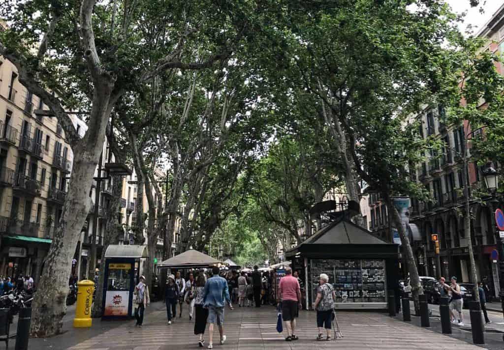 Barcelona - Tree lined street