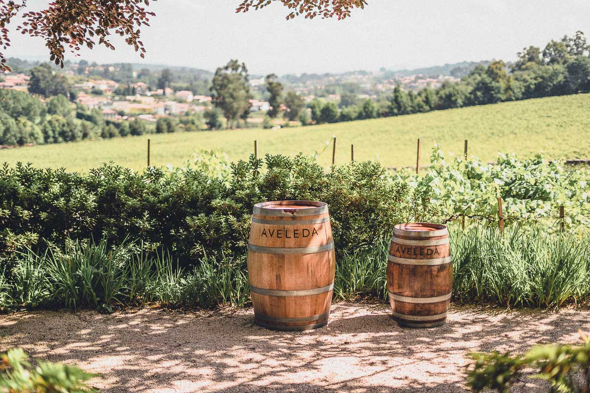 Wine barrels at vineyard