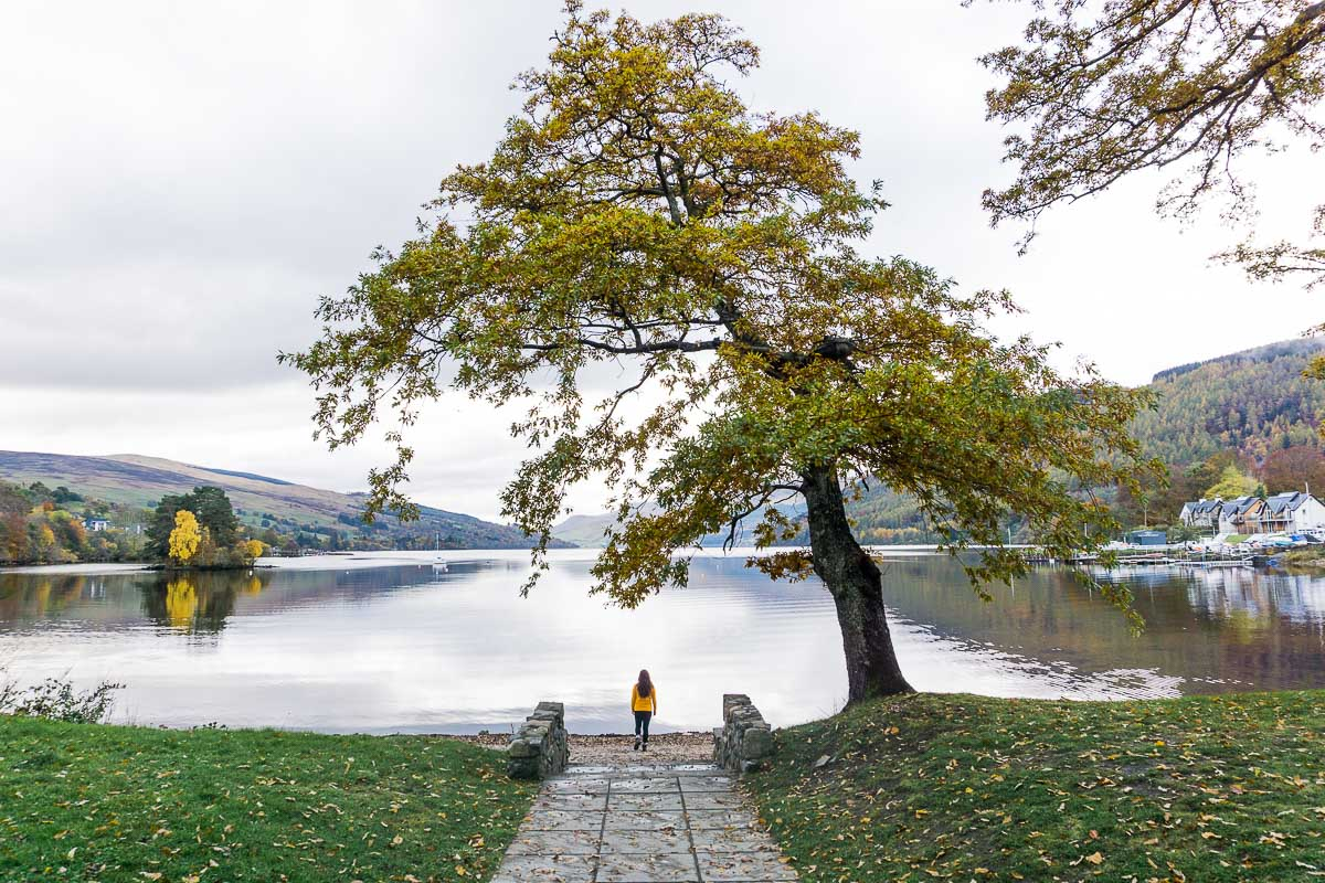 Loch Tay - Autumn tree next to loch with person under it