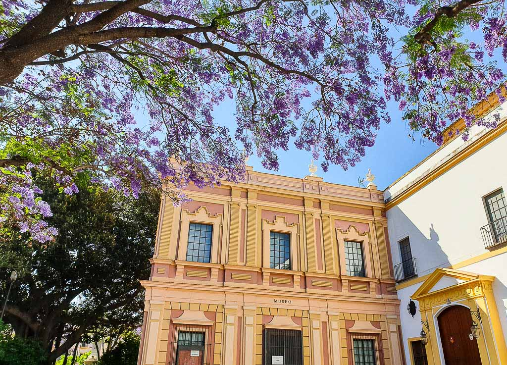 Europe in Spring - Seville Blossoms