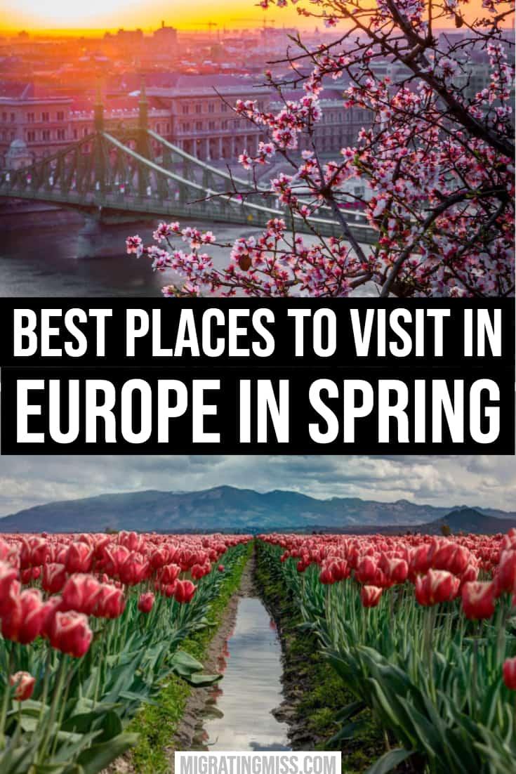 Europe in Spring Pin