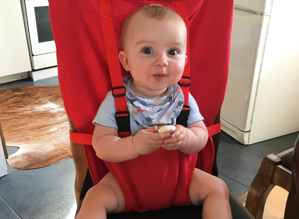 Best Travel High Chairs - Baby in fabric highchair
