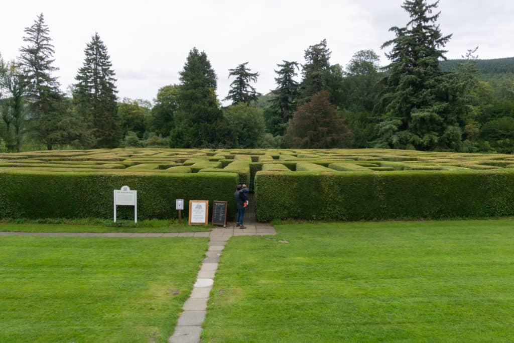 Tree Maze at Traquair House - Scottish Borders